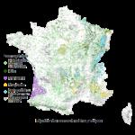 La diversité forestière en France